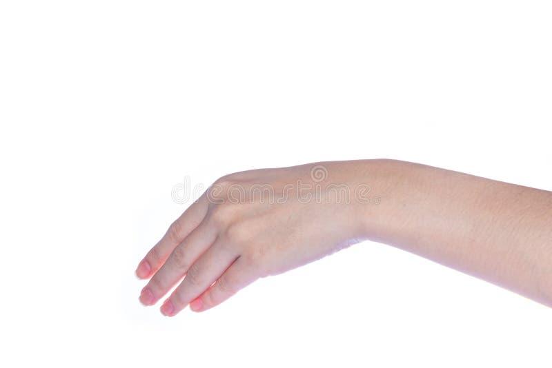 Abra la mano de la mujer en el fondo blanco fotos de archivo libres de regalías