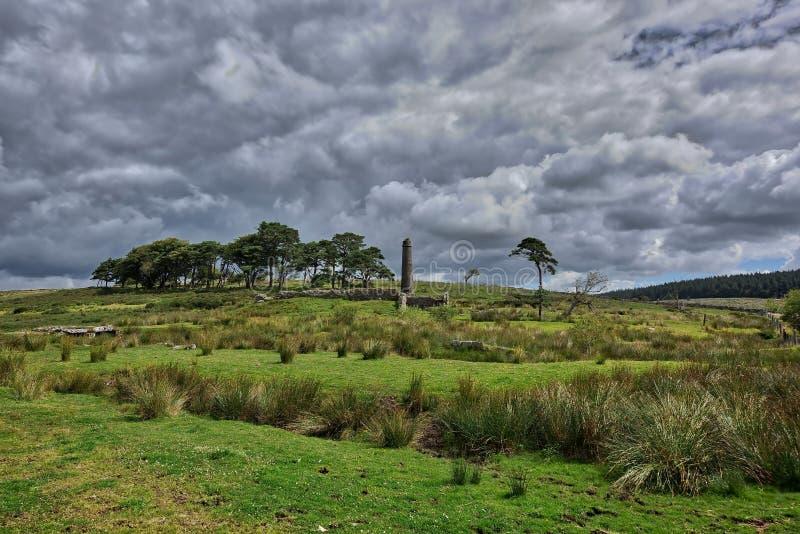 abra los campos verdes con los árboles encima de Dartmoor en Inglaterra fotos de archivo