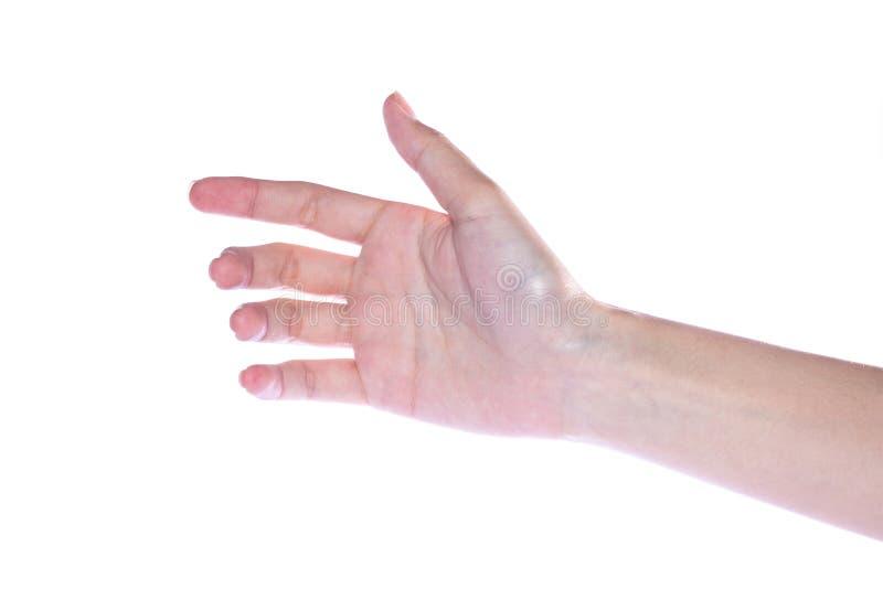 Abra a mão da mulher no fundo branco fotografia de stock