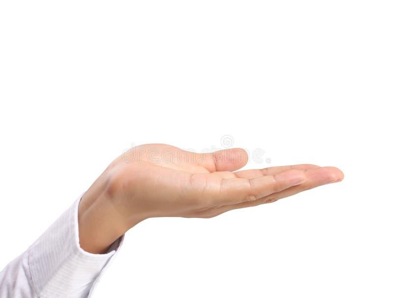 Abra a mão da palma imagens de stock