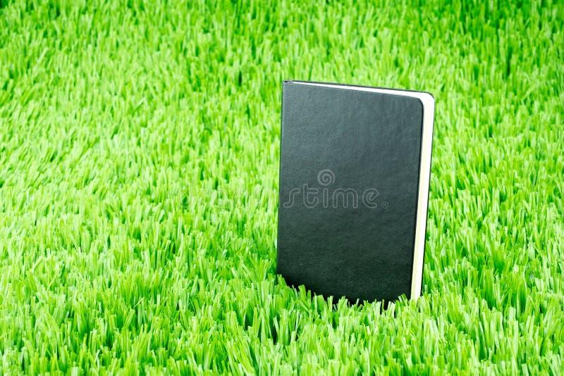 Download Abra O Caderno No Tem Da Grama Verde, Do Conceito Do Negócio E Da Educação Foto de Stock - Imagem de letra, reunião: 65580432