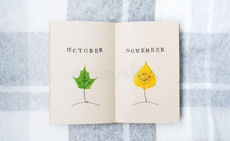 Abra o caderno, smilies do outono Folhas de um vidoeiro e de um bordo outubro novembro fotografia de stock royalty free
