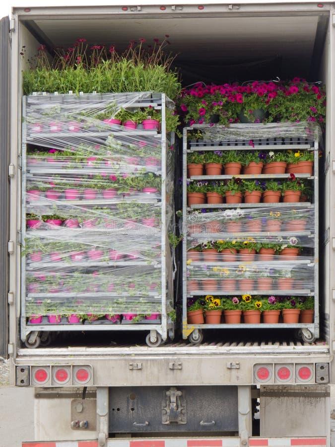 Abra o caminhão de entrega carregado com as páletes das plantas de potenciômetro imagens de stock royalty free