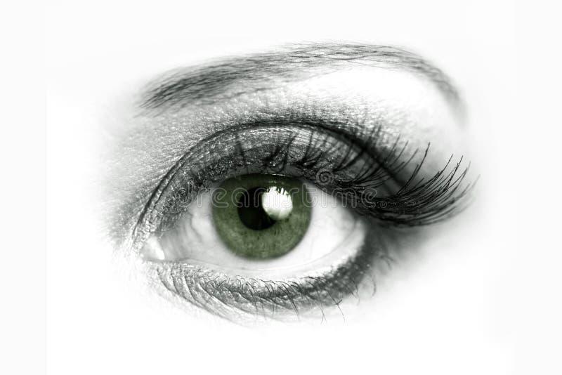 Abra o close up do olho foto de stock royalty free