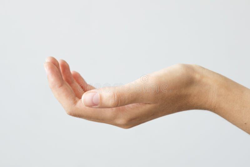 Abra o gesto de mão da palma da mão fêmea foto de stock royalty free