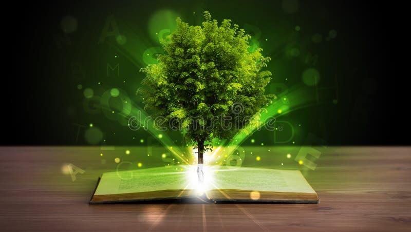 Abra o livro com a árvore e raios de luz verdes mágicos fotos de stock royalty free