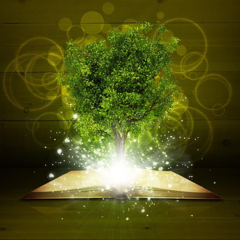 Abra o livro com a árvore e raios verdes mágicos de ilustração royalty free