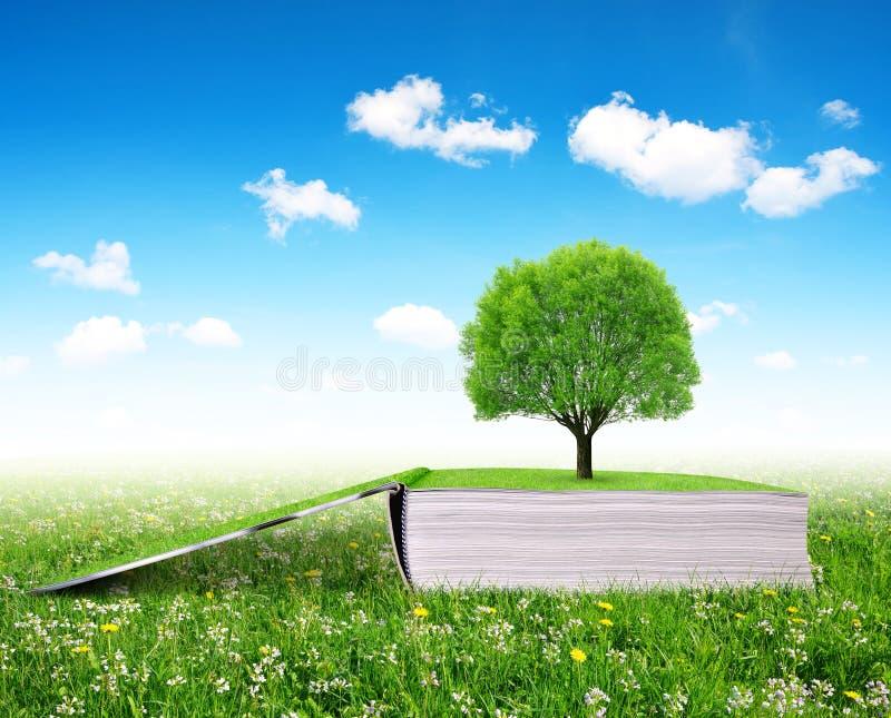 Abra o livro da natureza com árvore imagem de stock royalty free