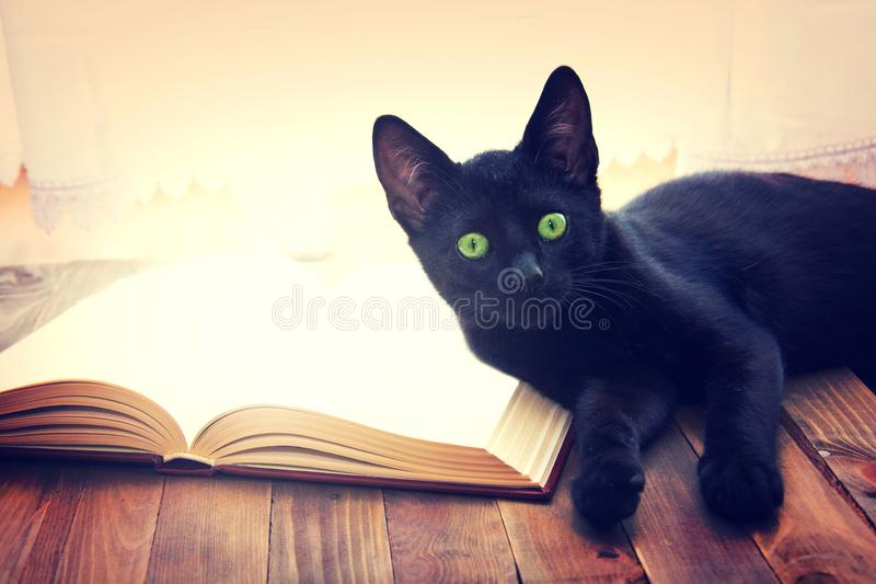 Abra o livro e o gato preto na tabela de madeira fotos de stock royalty free