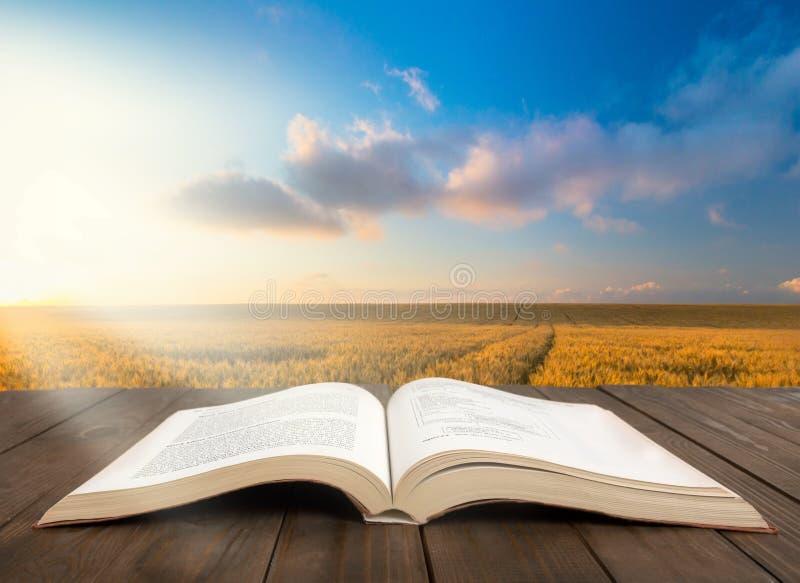 Abra o livro na tabela de madeira velha sobre o por do sol do prado fotos de stock royalty free