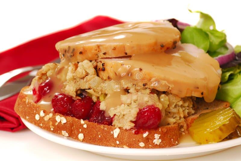 Abra o sanduíche de peru enfrentado imagem de stock