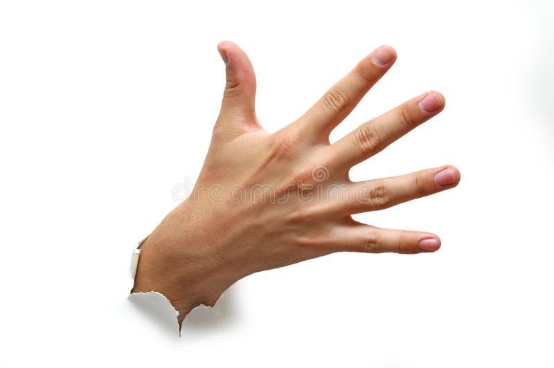 Abra a palma da mão fotos de stock