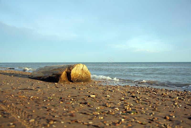 Abra una sesión la playa fotografía de archivo