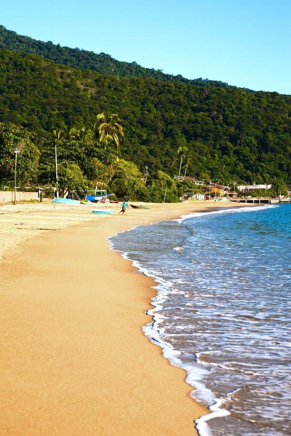 Free Abraao Beach Ilha Grande Rio De Janeiro State Brazil Royalty Free Stock Image - 37801556