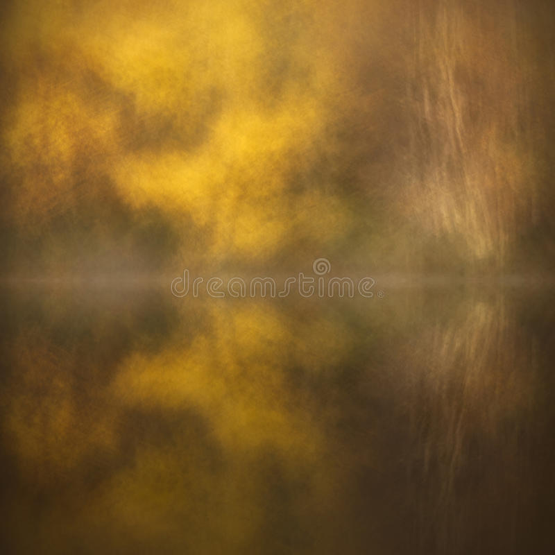 Free Abract Birch Reflections Stock Images - 25136024