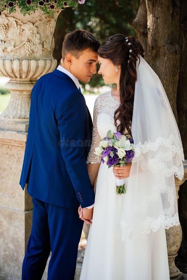 Abrazos hermosos de novia y del novio de Yong al aire libre la novia abraza al novio Pares en amor en el día de boda fotografía de archivo libre de regalías