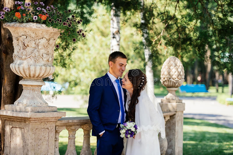 Abrazos sonrientes hermosos de novia y del novio de Yong en el parque la novia abraza al novio Pares en amor en el día de boda foto de archivo