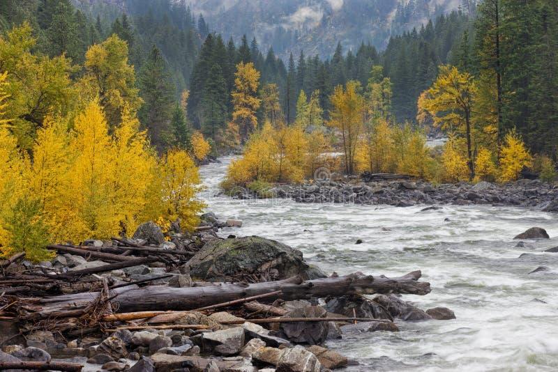 Abre una sesión la orilla del río imágenes de archivo libres de regalías