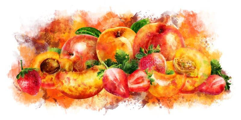 Abricó, pêssego e morango no fundo branco Ilustração da aguarela ilustração do vetor