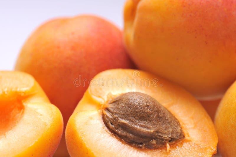Abricot image stock