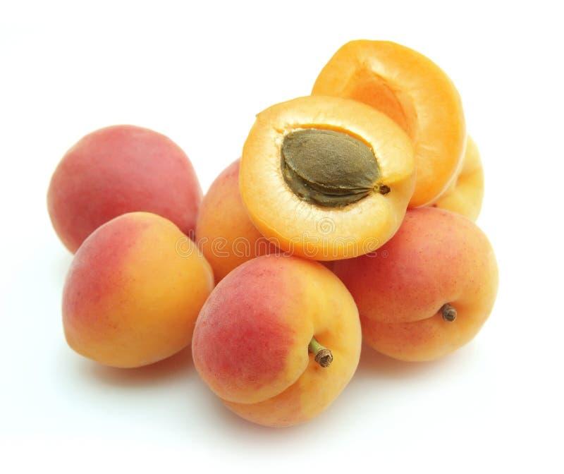 Abricot doux photo stock