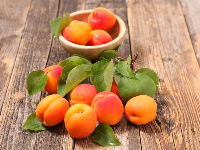 Abricot et feuille images libres de droits