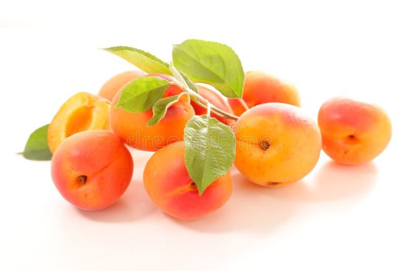 Abricot et feuille photos libres de droits