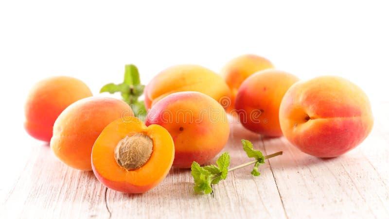 Abricot et feuille photographie stock