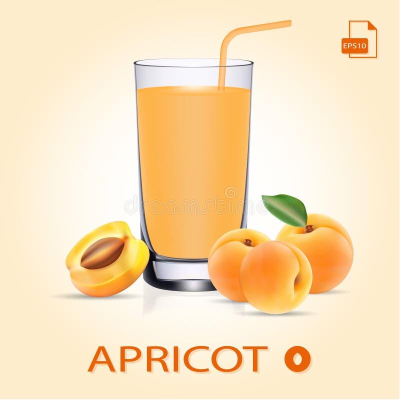 Abricot Juice Set With Fresh Fruits et feuilles illustration de vecteur