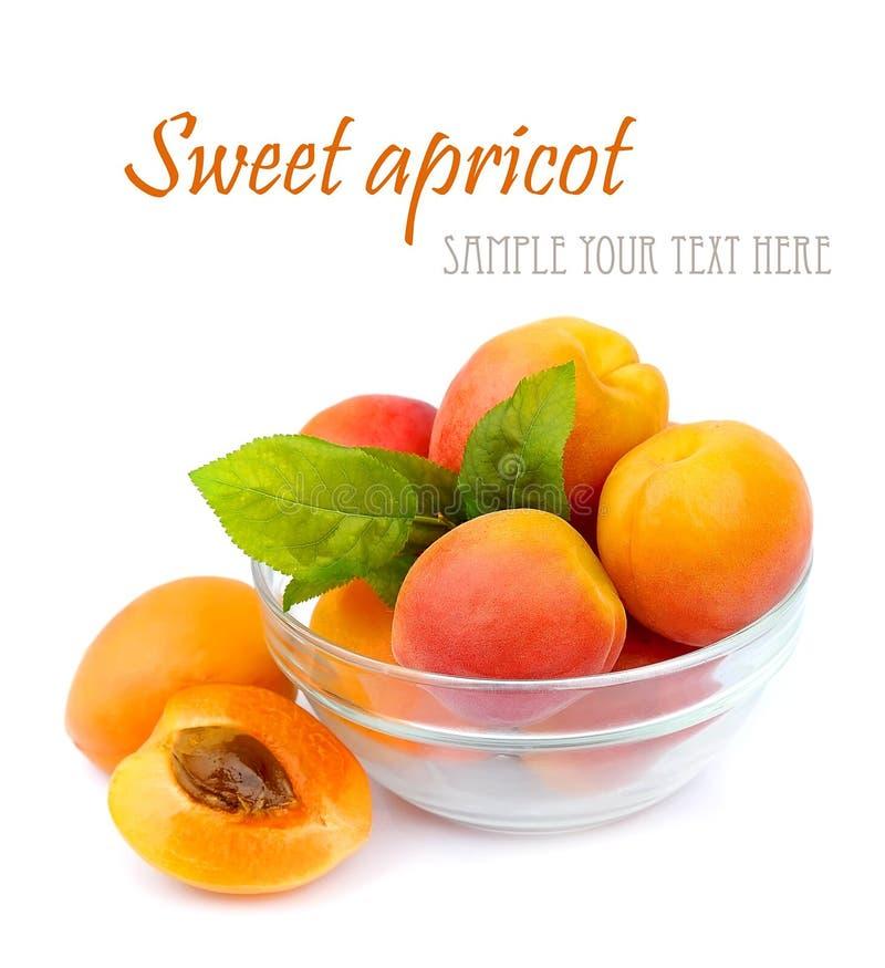 Abricot mûr de segment de mémoire photos libres de droits