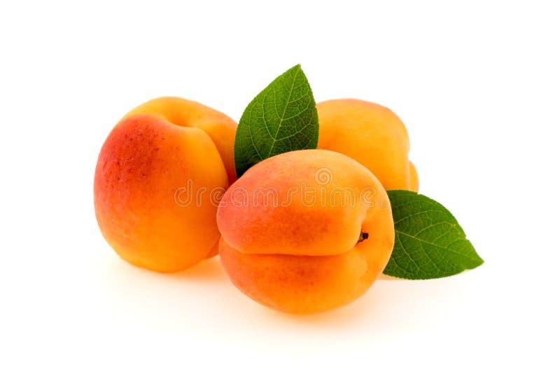 Abricot mûr avec des feuilles d'isolement images stock