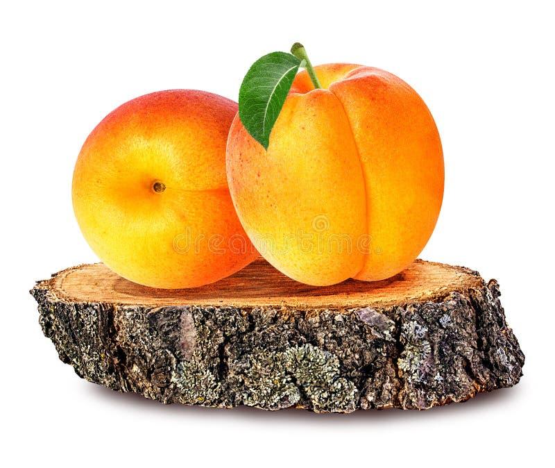 Abricot sur une section en bois de ross de  de Ñ de tronc d'arbre d'isolement sur le whi photographie stock libre de droits