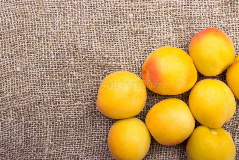 abricots dans une cuvette sur renvoyer le fond image stock