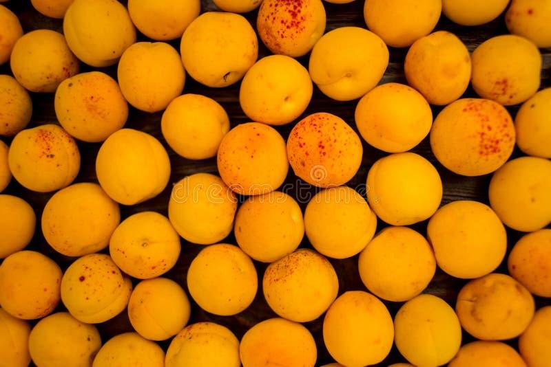 Abricots frais comme fond, texture, composition en fruit photo libre de droits