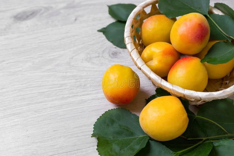 Abricots frais dans le panier sur une table en bois photographie stock