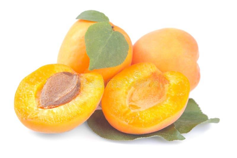 abricots frais et une moitié d'abricot avec une feuille sur un fond blanc d'isolement images libres de droits