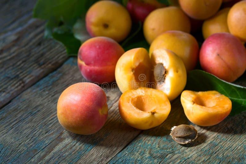Abricots frais juteux photos stock