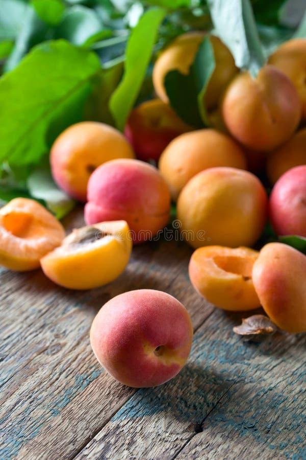 Abricots frais juteux images stock