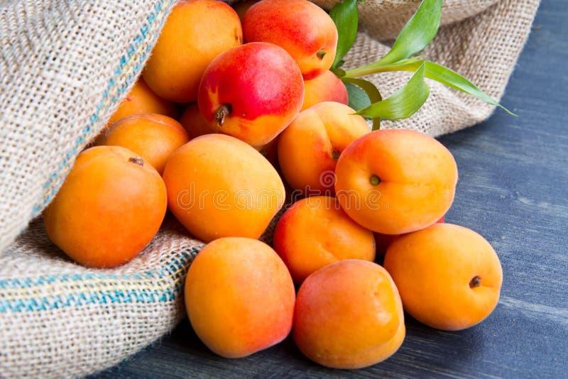 Abricots frais sur le sac à toile de jute photographie stock libre de droits