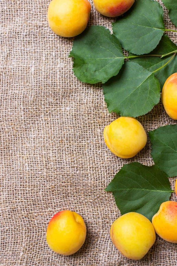 abricots frais sur le sac à toile de jute sur la table images stock