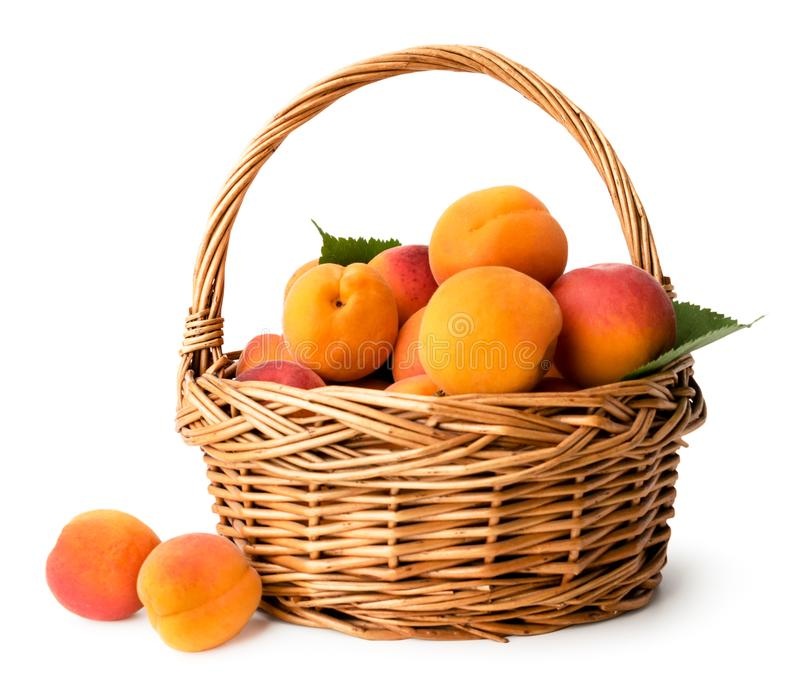 Abricots mûrs dans un panier sur un blanc, d'isolement image libre de droits