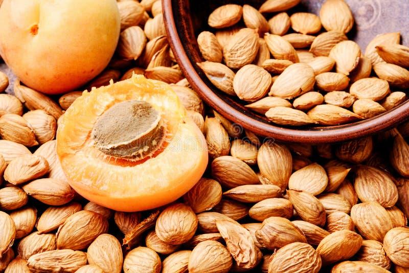 Abricots nettoyés de noyaux photo stock