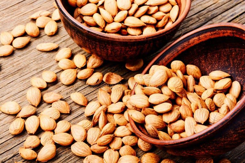 Abricots nettoyés de noyaux image stock