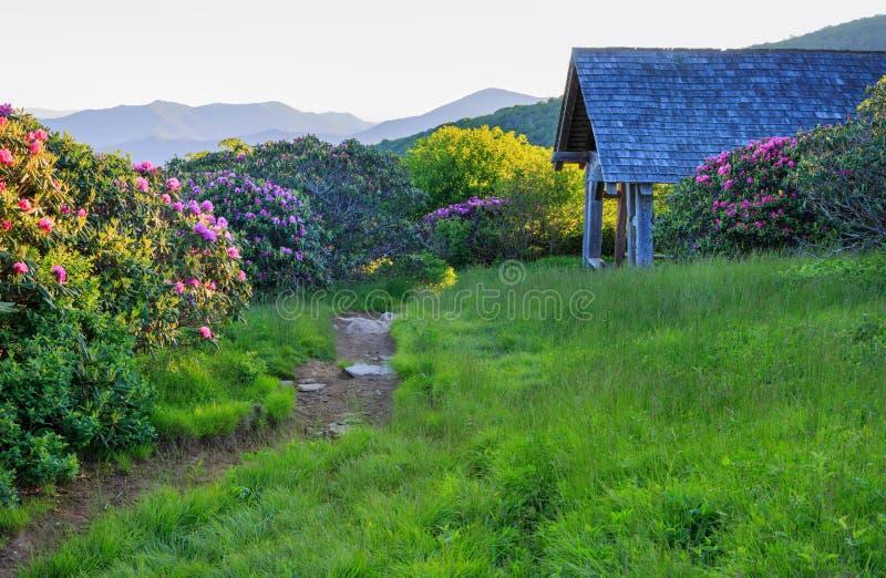 Abrigo Craggy North Carolina dos jardins da fuga de caminhada fotografia de stock royalty free