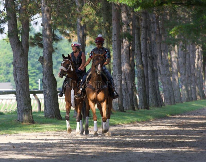 Abrigo do cavalo - molas de Saratoga imagens de stock
