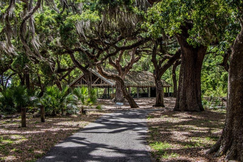 Abrigo do piquenique no parque da região selvagem do lago crews, Florida foto de stock royalty free