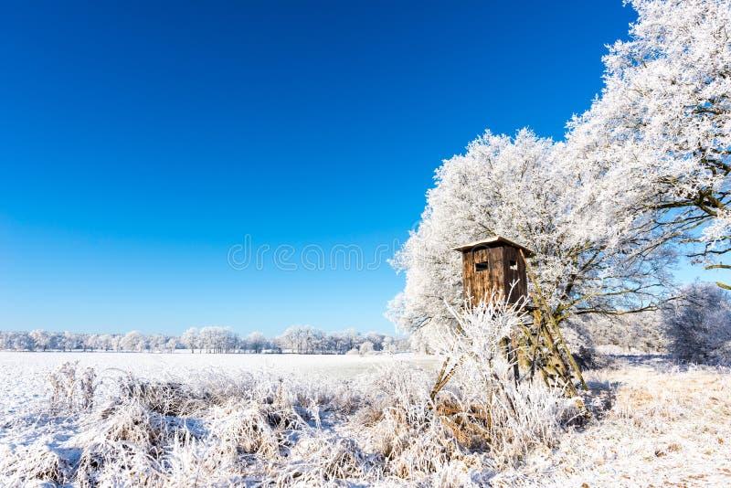 Abrigo marrom de madeira da caça ao lado das árvores congeladas imagens de stock royalty free