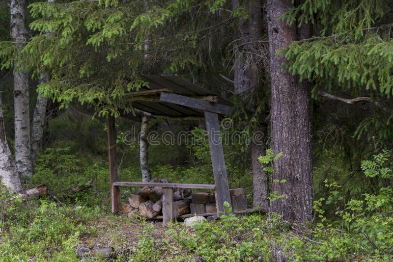 Abrigo simples típico da caça de Moos da Suécia do norte imagem de stock royalty free