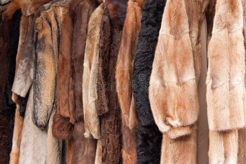 Abrigos de pieles animales foto de archivo libre de regalías