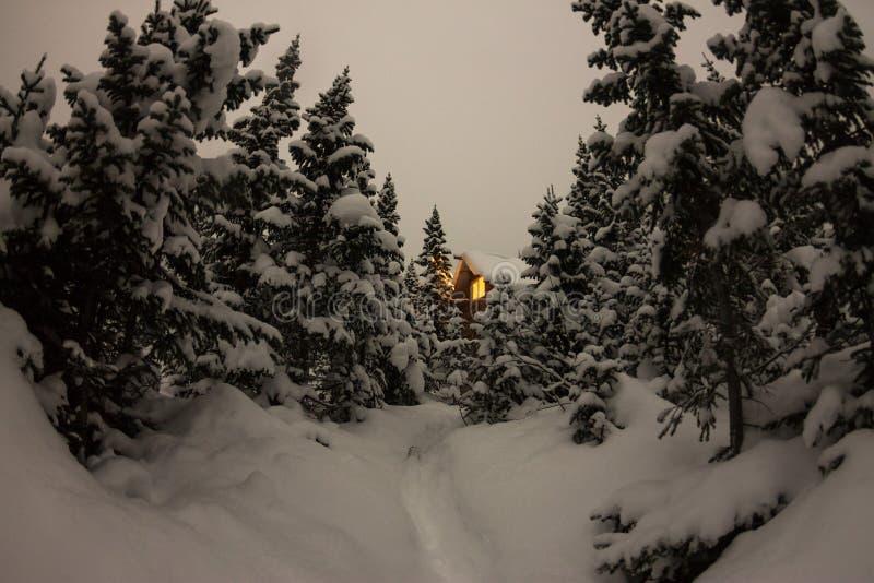 Abrigue o chalé durante uma queda de neve na floresta do inverno das árvores no nig foto de stock